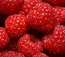 Zmeur - arbusti fructiferi